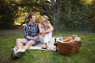 Picnic in the woods with wine and a cheese board.