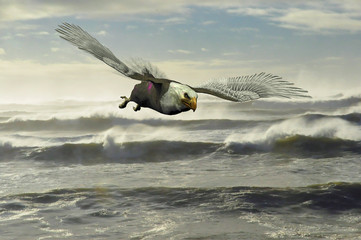 Rendering of a bald eagle flying low over the Pacific Ocean surf at a Washington state beach