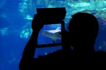 silhouette of a man photographing a shark aquarium