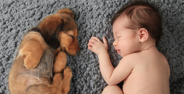 newborn baby and puppy