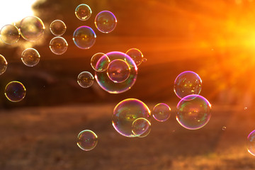 soap bubbles into the sunset , blurred background .close-up