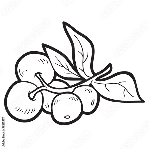 cranberry coloring pages kids - photo#26