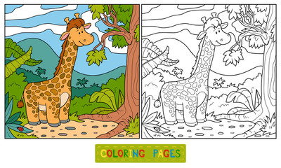 Coloring book (giraffe)