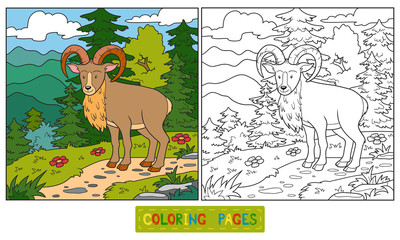 Coloring book (urial)
