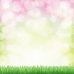 spring background with green grass and bokeh effects lights. vec