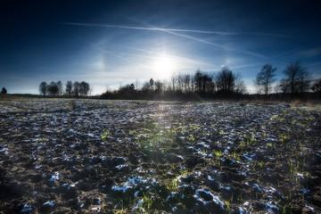 Early winter field landscape