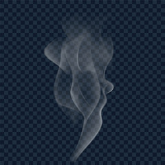 White cigarette smoke wave on transparent background