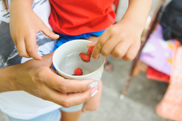 Boy Holding Strawberry