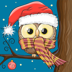 Owl in a Santa hat