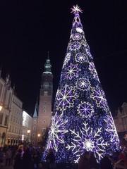 Jarmark bożonarodzeniowy we Wrocławiu