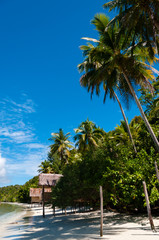 Nipa bamboo Huts at the White Sand beach with palm trees
