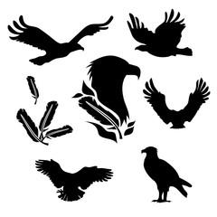 Eagle set vector