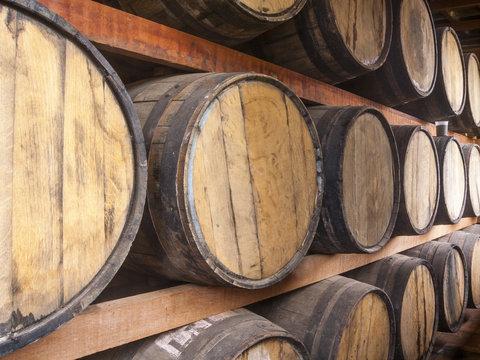 Oak barrels storage
