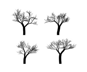 Vector trees black silhouettes isolated on white.