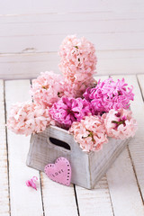 Background with fresh pink hyacinths in box  and decorative hear
