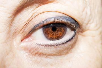 insightful look brown eyes