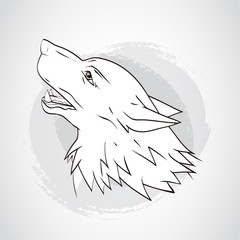 Vector illustration with wolf's head.