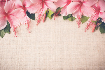 Pink Hibiscus flowers on linen, copy space background, selective