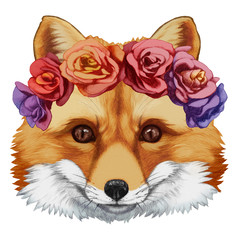 Portrait of Fox with floral head wreath. Hand-drawn illustration, digitally colored.