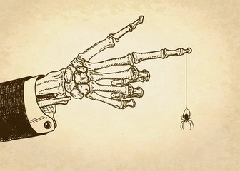 Skeleton hand with spider. Vector illustration, eps10.