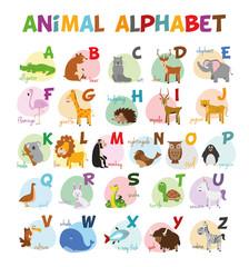 Ilustración de vector Alfabeto ilustrado con animales para niños. Abecedario inglés. Aprender a leer.