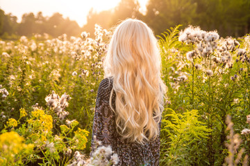 Long haired blond woman turned back on sunset meadow