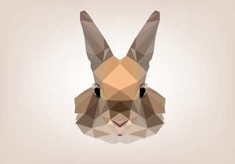 Coniglio Low Poly