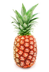 Fresh ripe pineapple with green leaves isolated on a white background. Design element for product label, catalog print, web use.