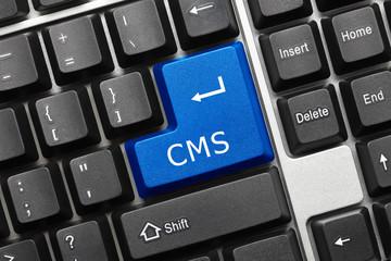 Conceptual keyboard - CMS (blue key)