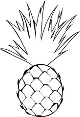 Coloring with pineapple