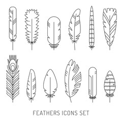 Feathers outline gray icons vector set. Modern minimalistic design.