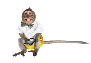 A monkey with a cell phone, which cut off the key, showing his teeth