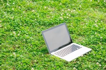 緑の中のパソコン イメージ