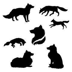 Fox set vector