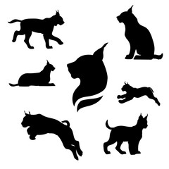 Lynx set vector