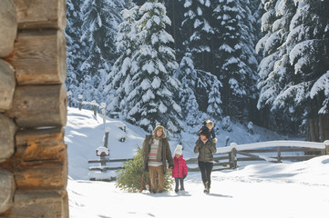 Austria, Salzburg Country, Flachau, View of family carrying christmas tree and sledge in snow