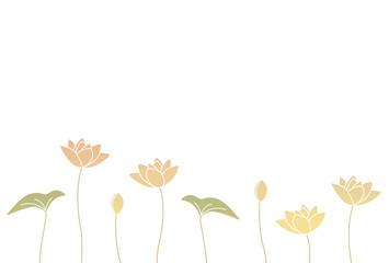蓮の花と葉