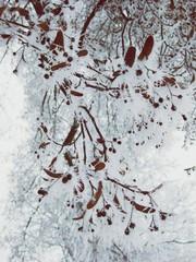 Frostiges Wetter
