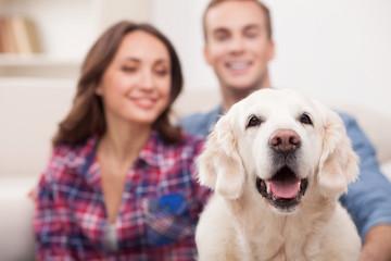 Cute boyfriend and girlfriend with pretty puppy