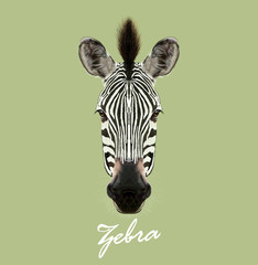 Vector Illustrated Portrait of Zebra.