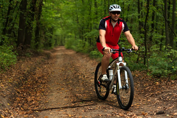 Bicyclist with His Bicycle in the Summer Forest
