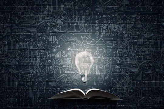 Bright light of education