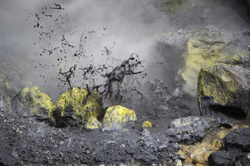The boiling mud and sulphurous fumaroles at Mutnovsky volcano, K