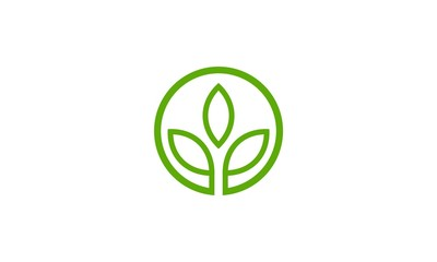 abstract green leaf company logo