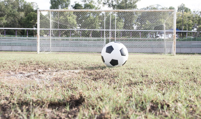 Close up soccer ball on field