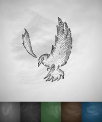 bird icon. Hand drawn vector illustration