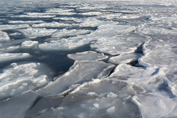 Ice floe at the sea