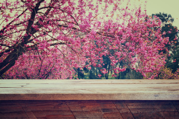 wooden rustic table in front of Spring Cherry blossoms tree. retro filtered image. product display and picnic concept