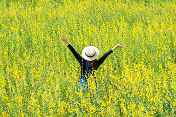 Woman is in sunhemp field