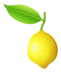 Fresh lemon with stem and leaf